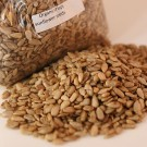 Sunflower Seeds (12 OZ)